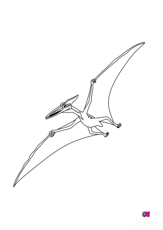 Coloriage de dinosaures - Ptérodactyle