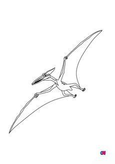 Coloriage Ptérodactyle