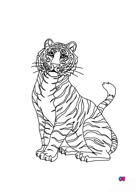 Coloriages d'animaux - Un tigre