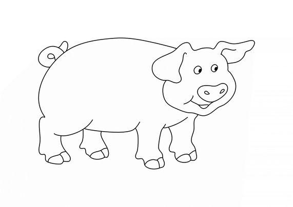 Coloriages d'animaux - Un cochon