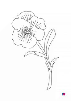 coloriage Les fleurs