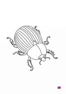 Coloriage Un scarabée