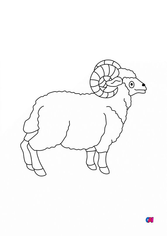 Coloriages d'animaux - Un bélier