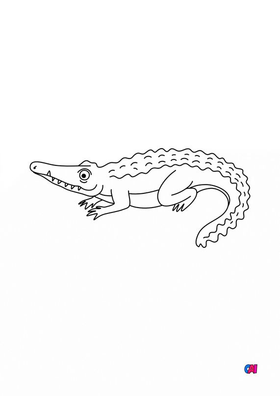 Coloriages d'animaux - Un crocodile