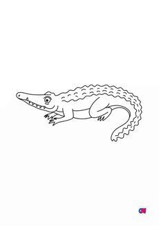 Coloriage Un crocodile