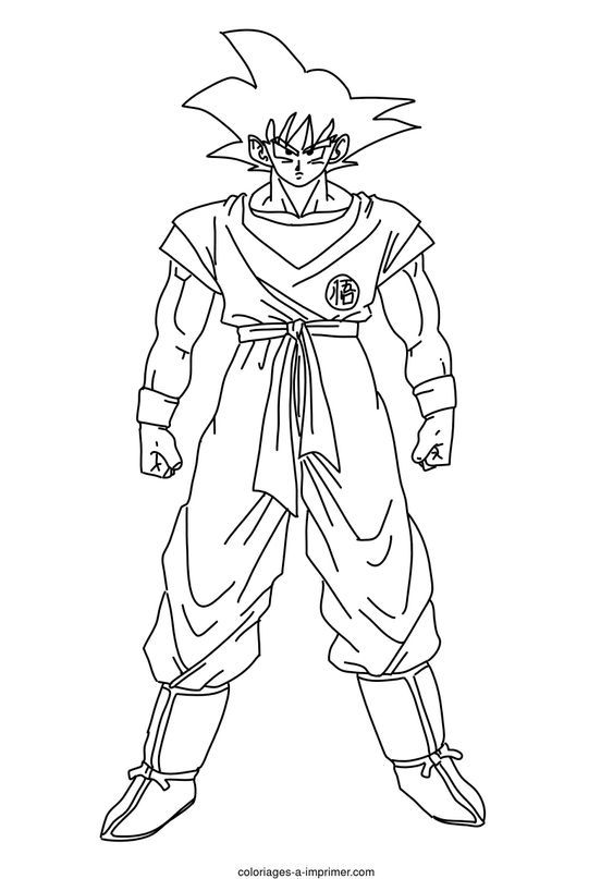 Coloriage Dragon Ball Z A Imprimer Son Goku