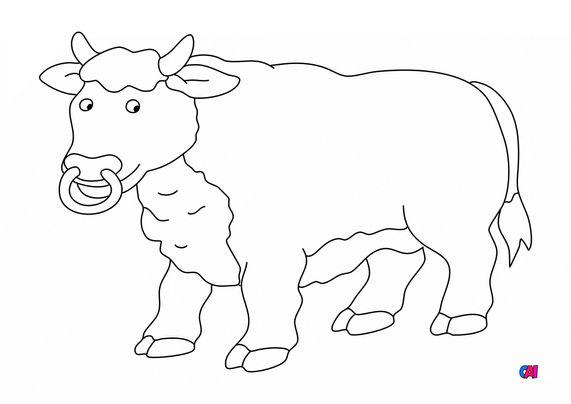 Coloriages d'animaux - Un taureau