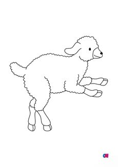 Coloriage Un agneau