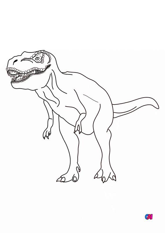 Coloriage de dinosaures - T-Rex
