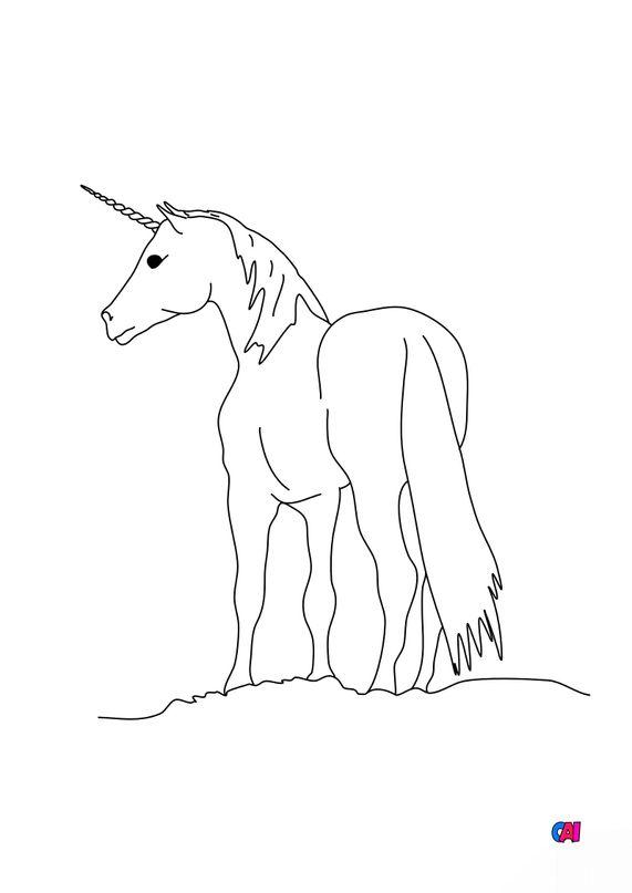 Coloriage Licornes - Licorne 3