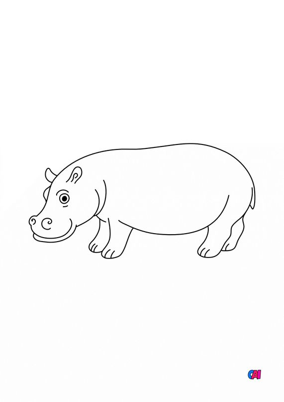 Coloriages d'animaux - Un Hippopotame