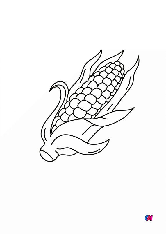 Mes premiers coloriages - Un épis de maïs