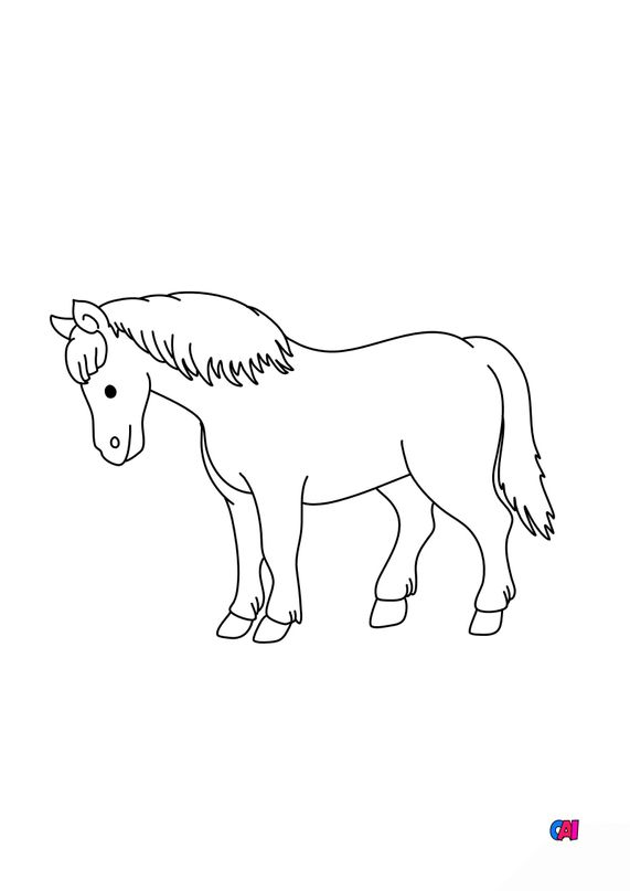 Coloriage de chevaux - Un cheval