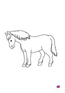 Coloriage Un cheval