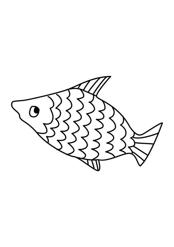 Coloriages d'animaux - jolie petit poisson