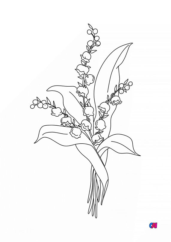 Coloriage 1er mai - Brin de muguet