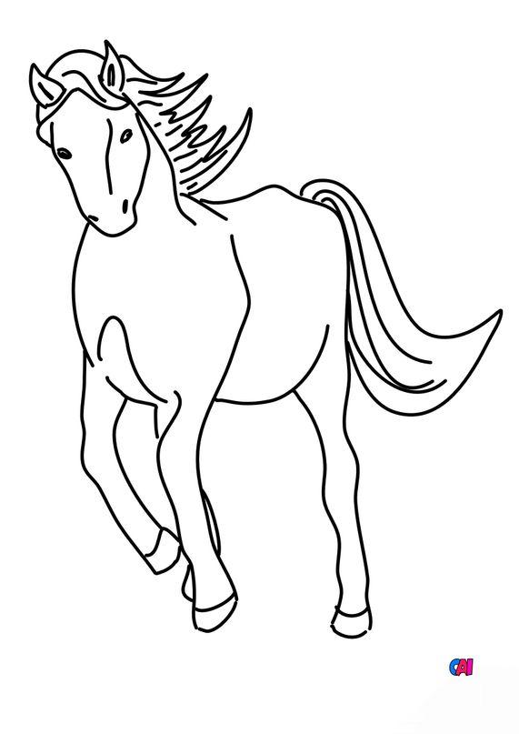 Coloriage de chevaux - Cheval au trot